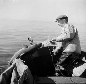 cape-cod-fishing